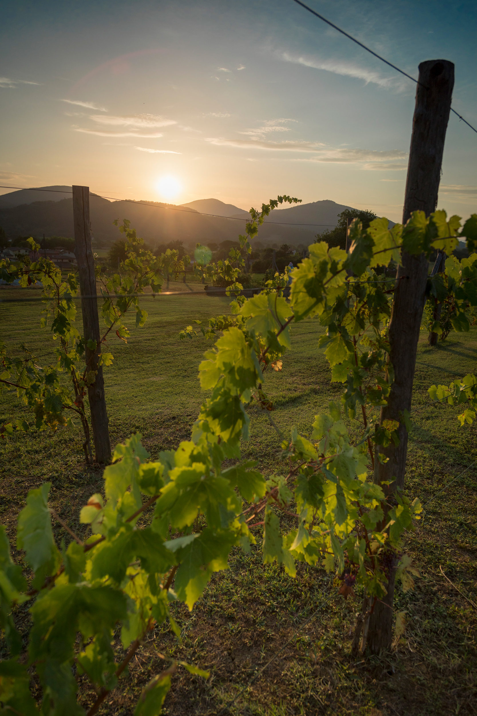 Sunset in Umbria, Italy